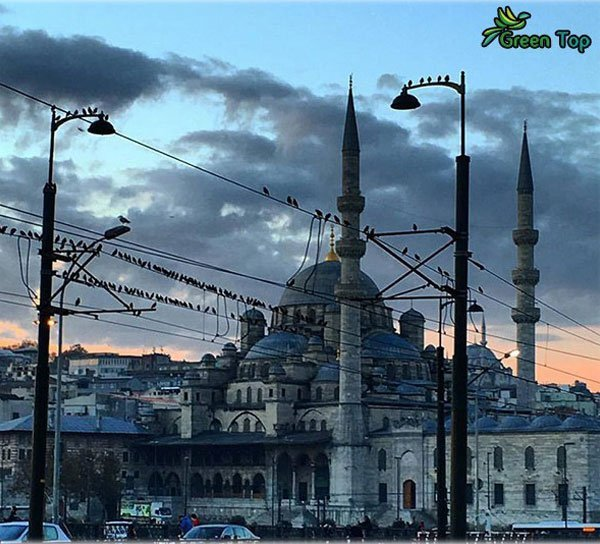 المسجد الجديد فى غلاطة
