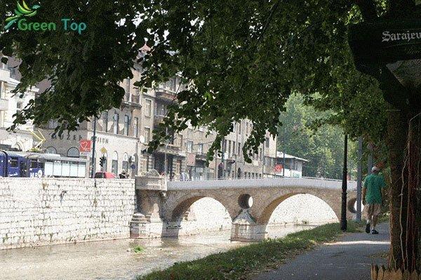 الجسر اللاتيني